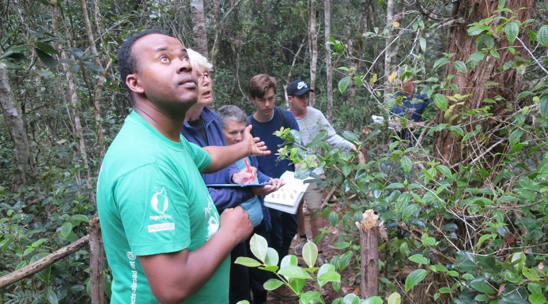 マダガスカルで野鳥の生態系調査を行う環境保護ボランティアたち